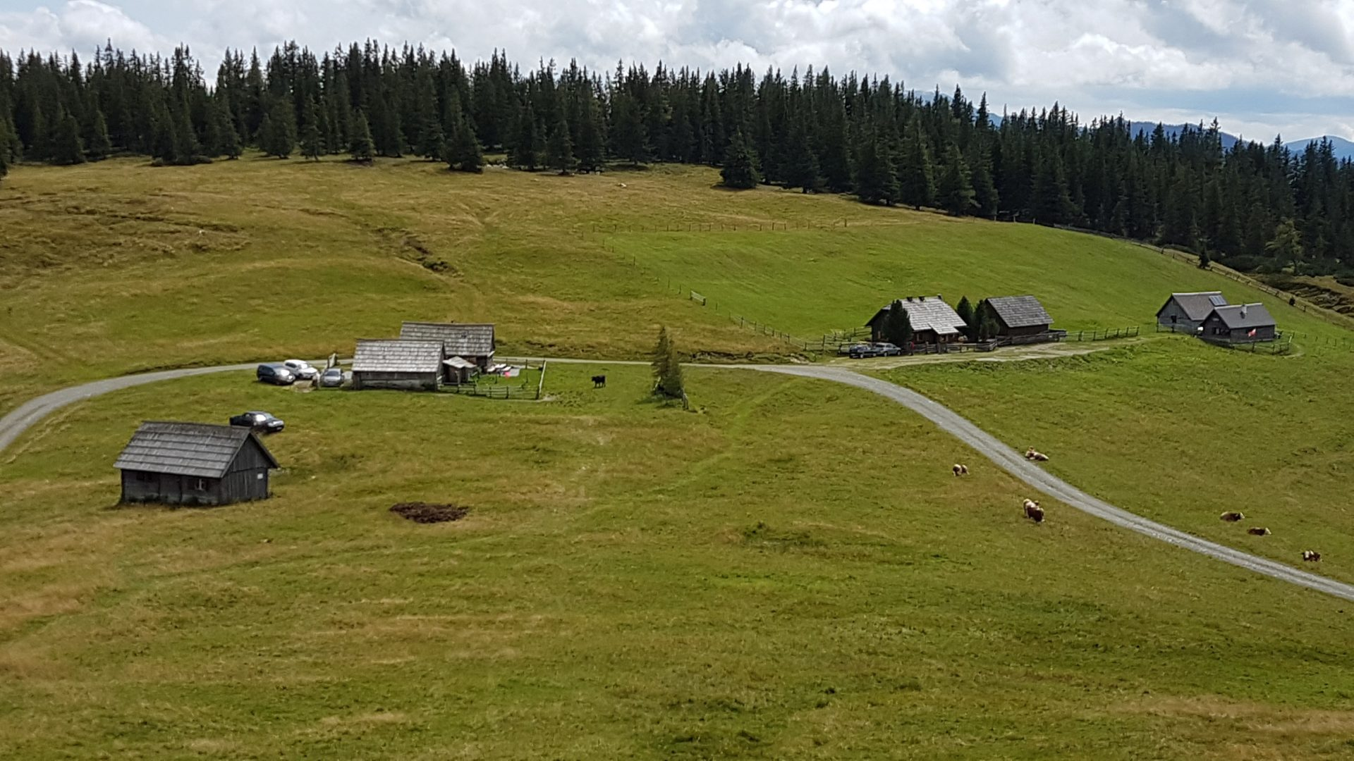 Wagenbänkalm Lahngangkogel Privatzimmer und Ferienwohnungen Gassner Nationalpark Gesäuse